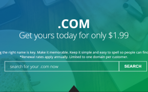 .com domain coupon at directnic