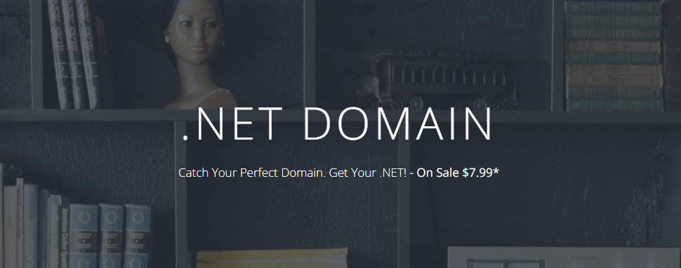 .Net domain at Dynadot only $7.99