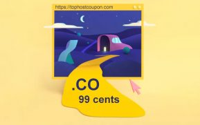 Co domain 99 cents