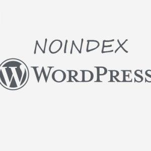 noindex wordpress
