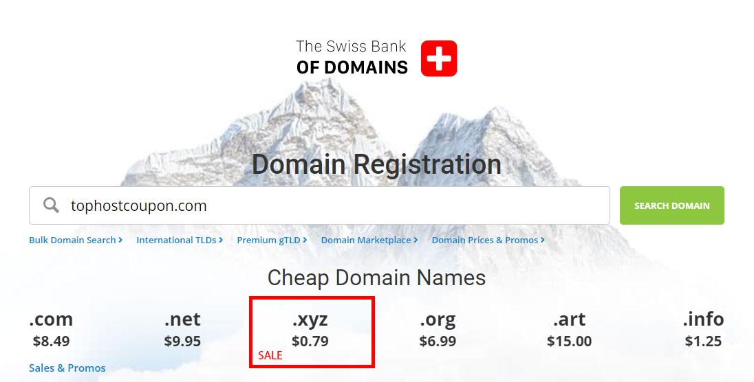 epik domain coupon