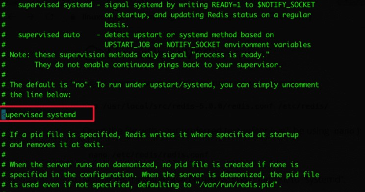 supervised systemd